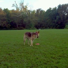 Photo taken at Cherokee Park Frisbee/Rugby Field by Steven G. on 9/12/2011