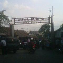 Photo taken at Pasar Burung Kota Malang by FELLIS A. on 8/16/2012