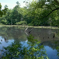 Photo taken at Allaire State Park by Jesse Y. on 8/1/2011