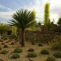 Photo taken at Desert Botanical Garden by Kimberly J. on 4/13/2012