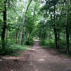 Photo taken at Bois de Boulogne by Patricia R. on 7/16/2012