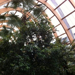 Photo taken at Winter Gardens by Mark N. on 3/19/2012