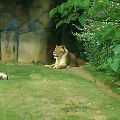 Photo taken at Montgomery Zoo Africa Exhibit by Makasha D. on 4/19/2012