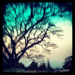 Photo taken at กองบิน 41 (Wing 41) by EvY✨ p. on 3/1/2012
