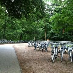 Photo taken at Nationaal Park De Hoge Veluwe by Jessica Christine T. on 7/7/2012