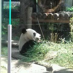 Photo taken at 上野動物園 (Ueno Zoo) by Kazuaki S. on 5/19/2012