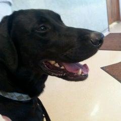 Photo taken at Clark Animal Hospital by Joe E. on 6/1/2012
