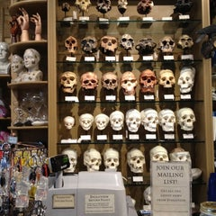Photo taken at The Evolution Store by Alissa S. on 6/1/2012