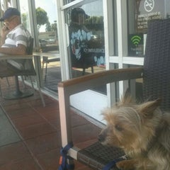 Photo taken at Starbucks by Andy C. on 6/6/2012