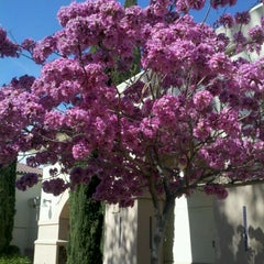 Photo taken at Burbank Public Library - Buena Vista by Karen H. on 3/10/2012