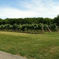 Photo taken at Hermes Vineyards by Diana K. on 6/24/2012