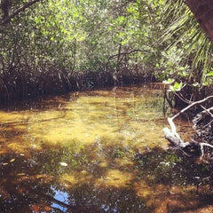 Photo taken at Weedon Island Preserve by Rick M. on 4/12/2012