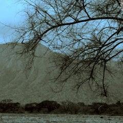Photo taken at Taman Nasional Baluran (Baluran National Park) by Explore Indonesia on 4/2/2012