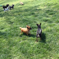 Photo taken at Sepulveda Basin Off-Leash Dog Park by Jennifer R. on 4/4/2012