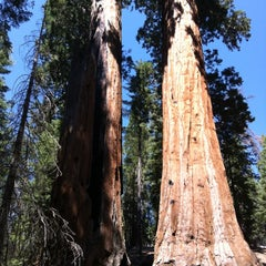 Photo taken at Kings Canyon National Park by Alena N. on 8/22/2012