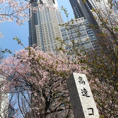 Photo taken at 新宿中央公園 (Shinjuku Central Park) by hiji_s on 4/2/2012