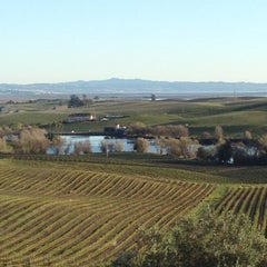 Photo taken at Artesa Vineyards & Winery by Amanda H. on 3/4/2012