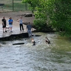 Photo taken at White Rock Lake Dog Park by Mickie (Brigette) J. on 5/6/2012