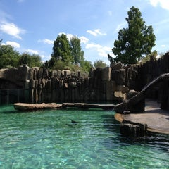 Photo taken at Zoo Praha | Prague Zoo by Andrey S. on 6/15/2012