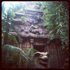 Photo taken at Indiana Jones Adventure by Jordan C. on 2/21/2012