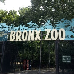 Photo taken at Bronx Zoo by Ines T. on 8/21/2012