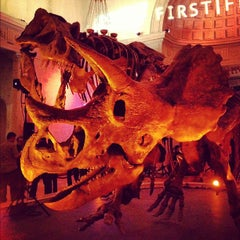 Photo taken at Natural History Museum of Los Angeles County by Edward S. on 3/3/2012