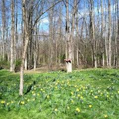 Photo taken at Powder Mills Park by Rose M. on 4/8/2012