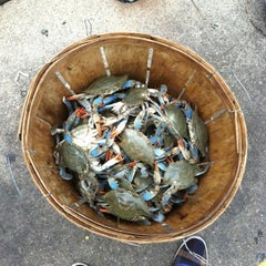Photo taken at Maine Avenue Fish Market by Sarah P. on 8/11/2012