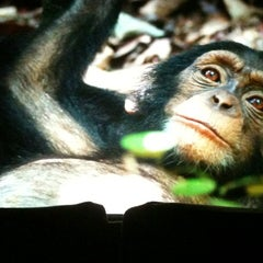 Photo taken at Omni Cinemas 8 by Michelle on 7/7/2012