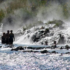 Photo of Boiling River in Mammoth Hot Springs, MT, US