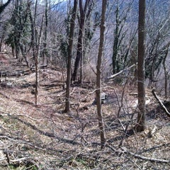 Photo taken at Appalachian Trail Conservancy Headquarters by Lauren on 2/18/2012