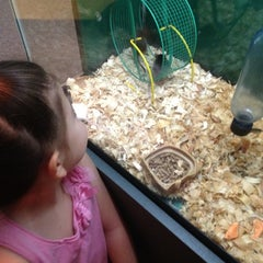 Photo taken at Charlotte Nature Museum by Rhonda S. on 5/23/2012
