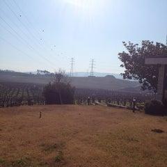 Photo taken at Quinta das Arcas by Diana M. on 2/22/2012
