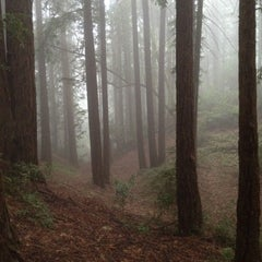 Photo taken at Joaquin Miller Park by Jason A. on 7/16/2012