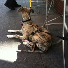 Photo taken at Barking Dog Luncheonette by kolby v. on 3/20/2012