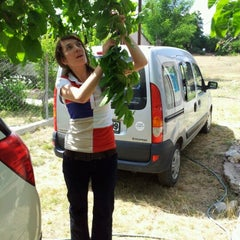 Photo taken at Aydinlar(avgadi) by Mehmet Oktay S. on 7/8/2012