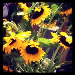Photo taken at Pearl Farmers Market by Mary Helen M. on 5/19/2012