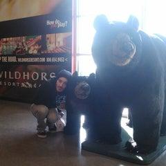 Photo taken at Arrowhead Travel Plaza by Ofwine on 3/7/2012