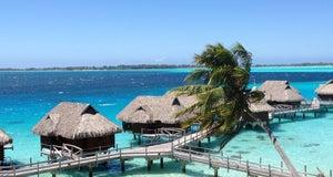 Foto Sofitel Bora Bora Motu Private Island, Bor-bor
