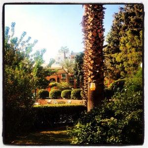 Marriott Gardens