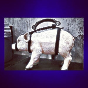 Photo of Nasty Pig