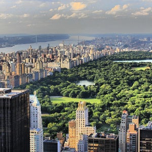 The 15 Best Places for a Park in New York City