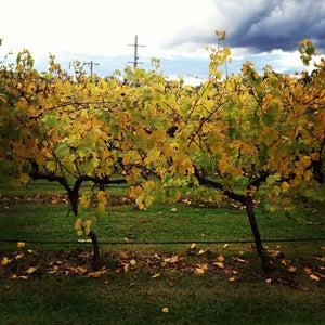 Photo of Mandala Wines