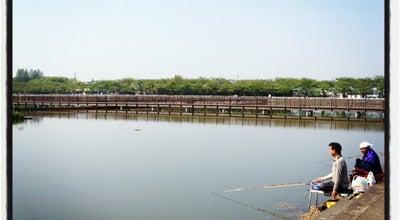 Photo of Park 伊佐沼公園 at 伊佐沼字沼田町584, 川越市 350-0855, Japan
