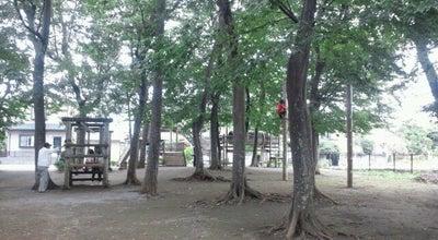 Photo of Playground 小塚山フィールドアスレチック at Japan