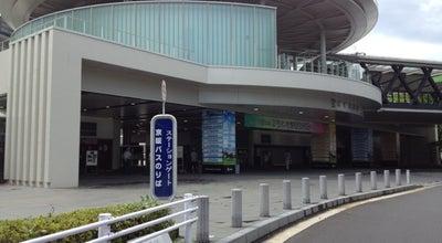 Photo of Arts and Entertainment 京都競馬場 at 伏見区葭島渡場島町32, 京都市 612-8265, Japan