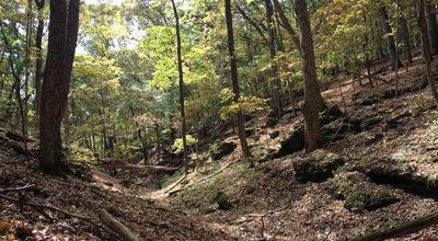 Photo of Trail Rockwood Reservation Lime Kiln Trail at Glencoe, MO 63038, United States