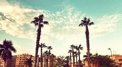 Photo of University Mansoura University | جامعة المنصورة at 60, El Gomhouria St, Mansoura 35516, Egypt