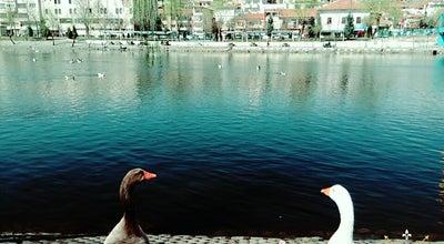 Photo of Water Park Avonos Park at Turkey