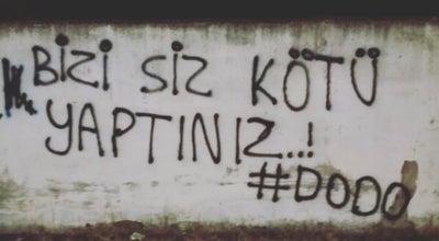 Photo of Nightclub sokakta hayat var at Turkey